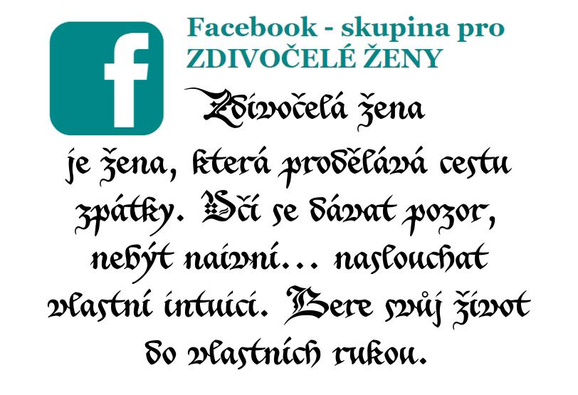 domácí-násilí-facebook-skupina